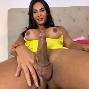 Top class bruna sono una top transex bellissima escort donna accompagnatrice